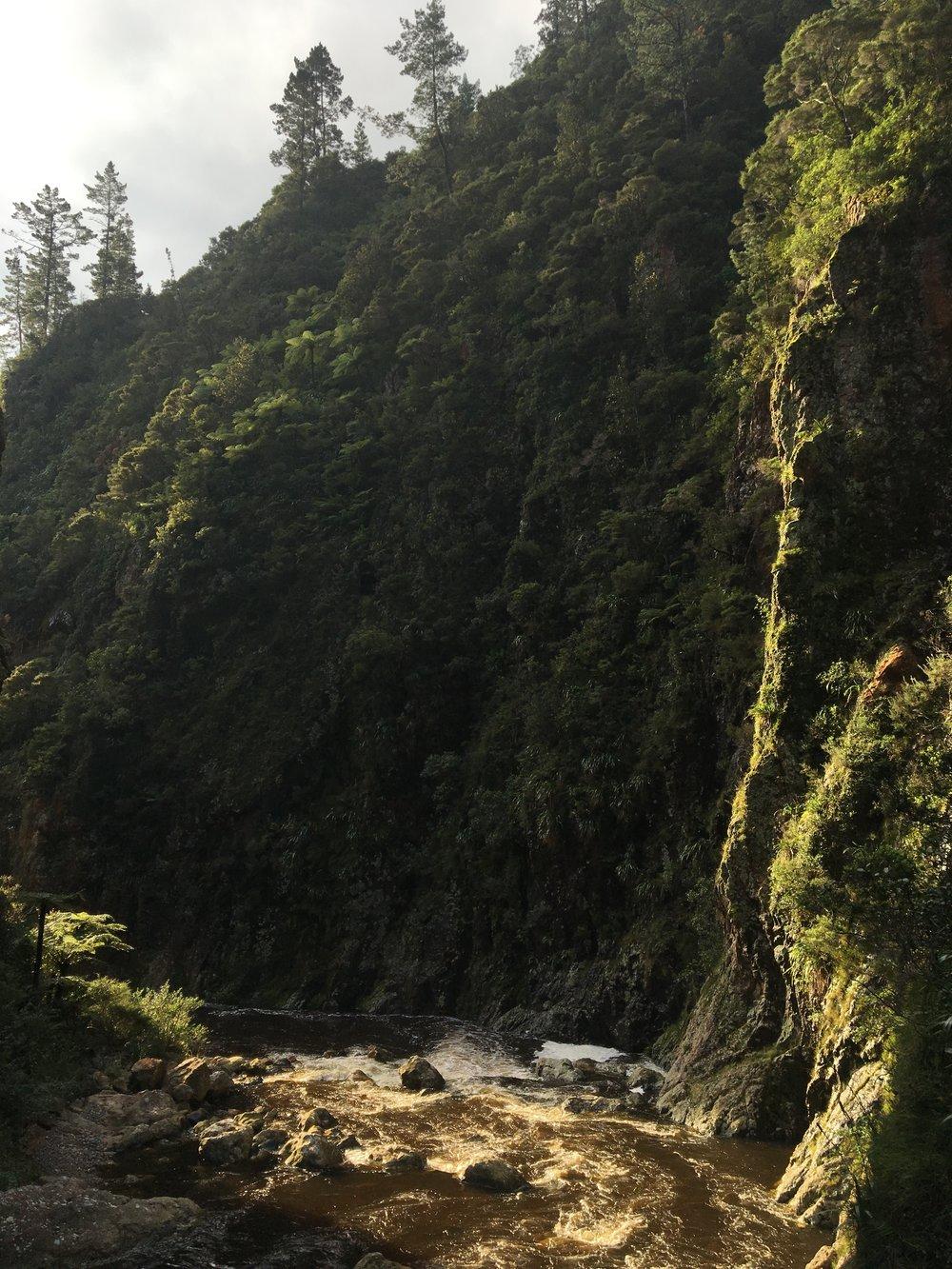Karangahake Gorge Historic Walkway, North Island