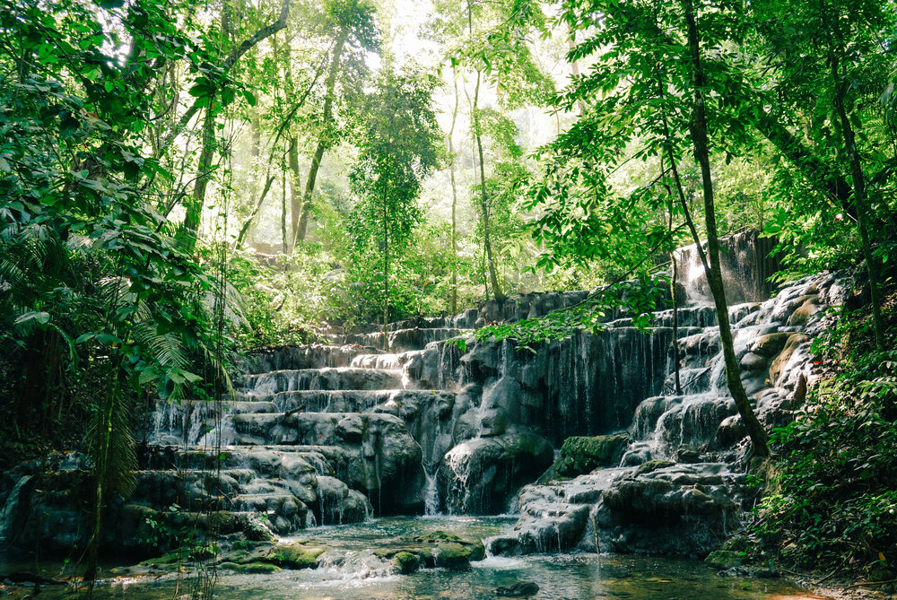 The most beautiful waterfall I've ever seen on the way to the Palenque ruins
