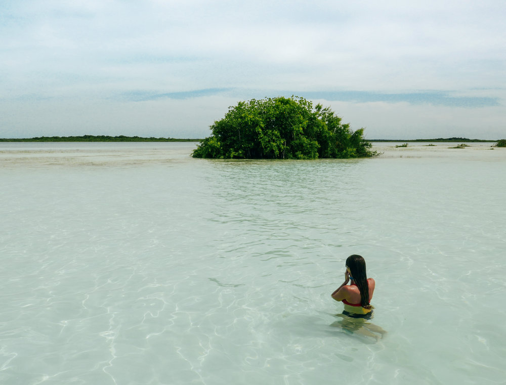 Cooling off at Bird Island