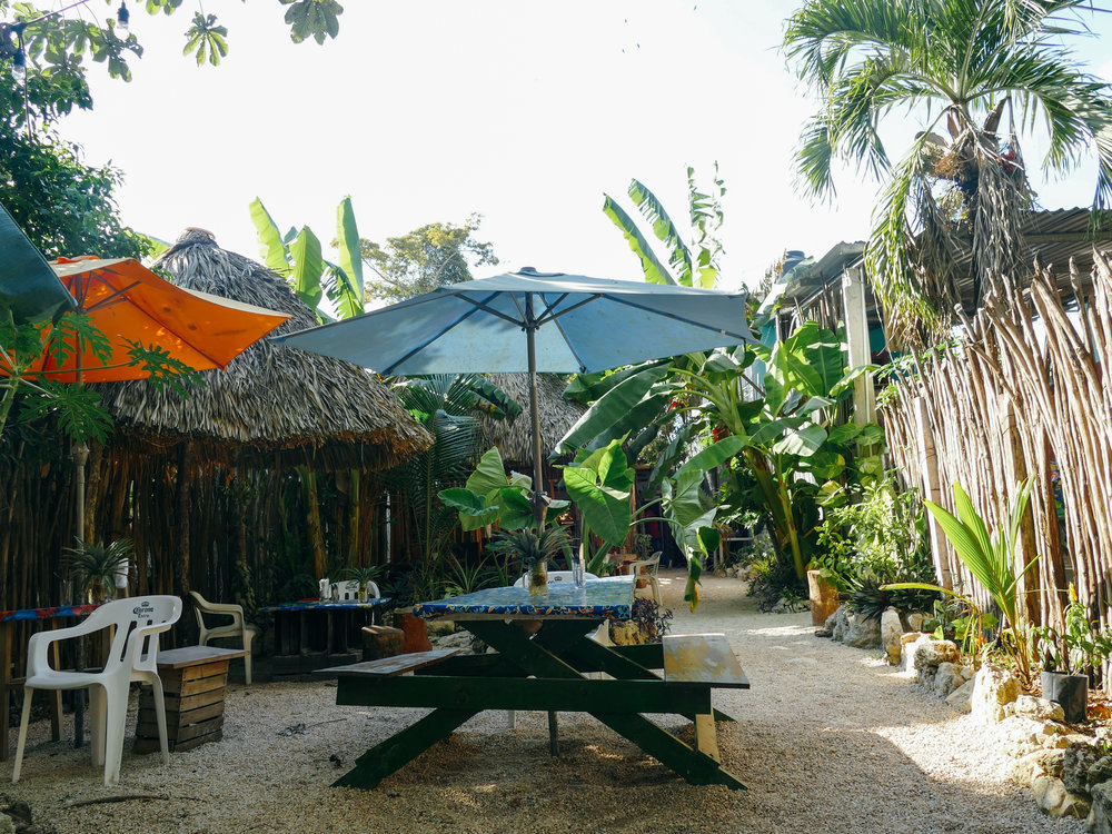 La Piña garden restaurant