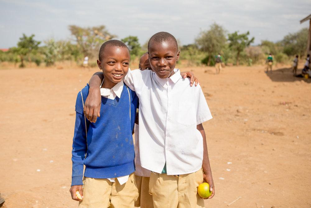 school_nutrition_health_amplifier