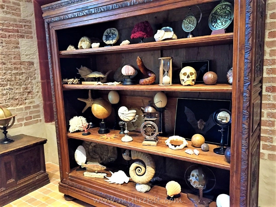 A collection of curiosities.