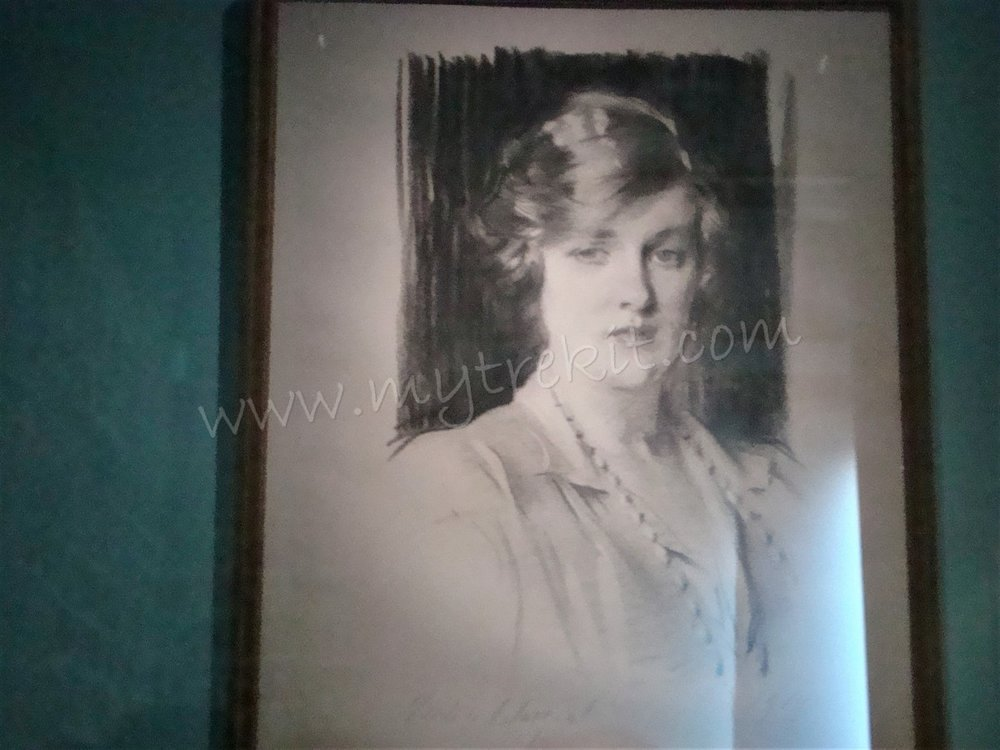 Striking portrait: This is one of Diana's ancestors and the resemblance is amazing.