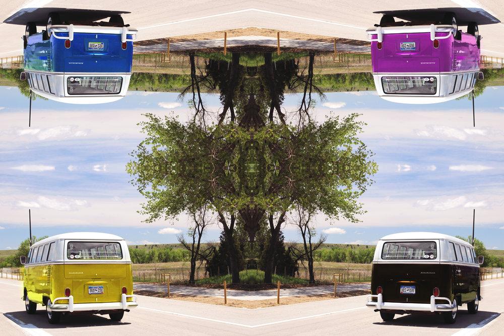 Vans.jpg