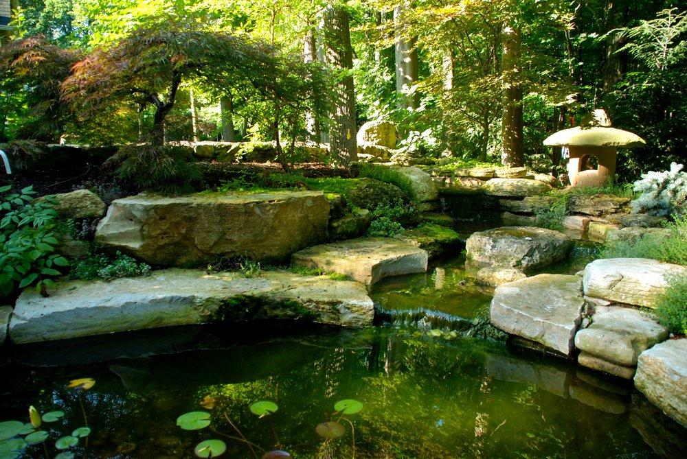 asian water garden.jpg