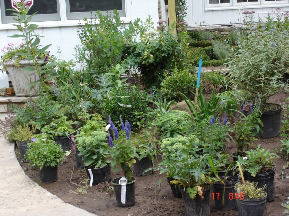 August 2009 Landscaping,Belvidere,DadsBD 121.jpg