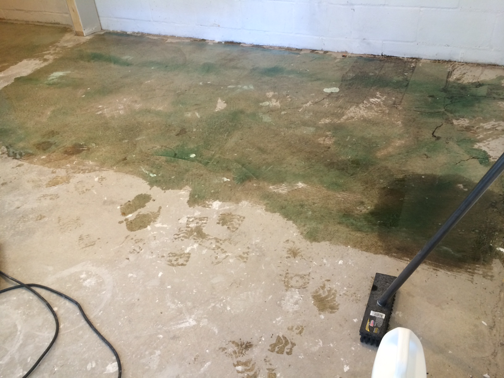 The sludge that I used to clean the floor. Although I would like to say it was a miracle cleaner, I dont think it really was. I think my little steal wool was the real life saver in the situation