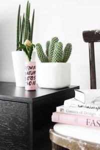 cacti+8.jpg