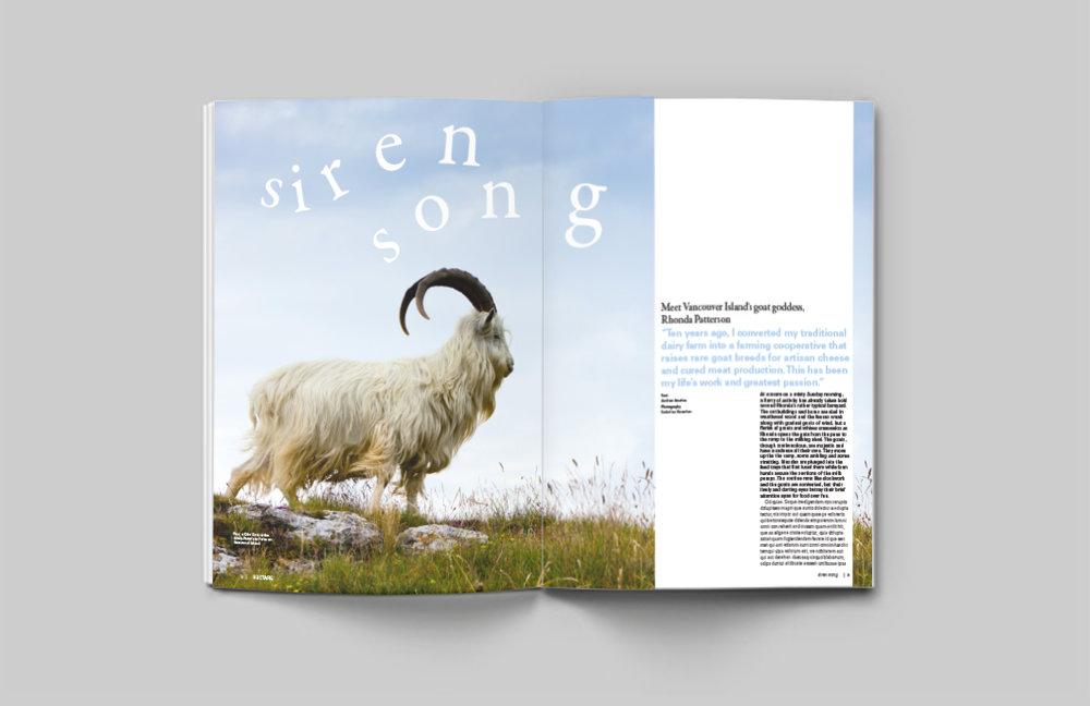 goats-magazineeditorial-04.jpg
