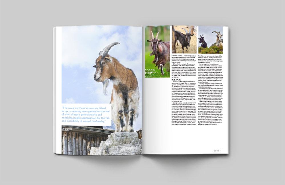 goats-magazineeditorial-06.jpg
