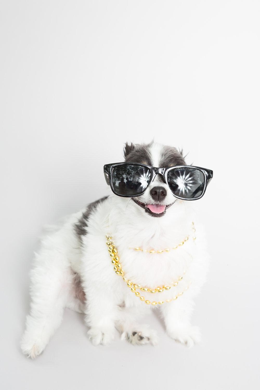 bruce wayne sunglasses-1.jpg