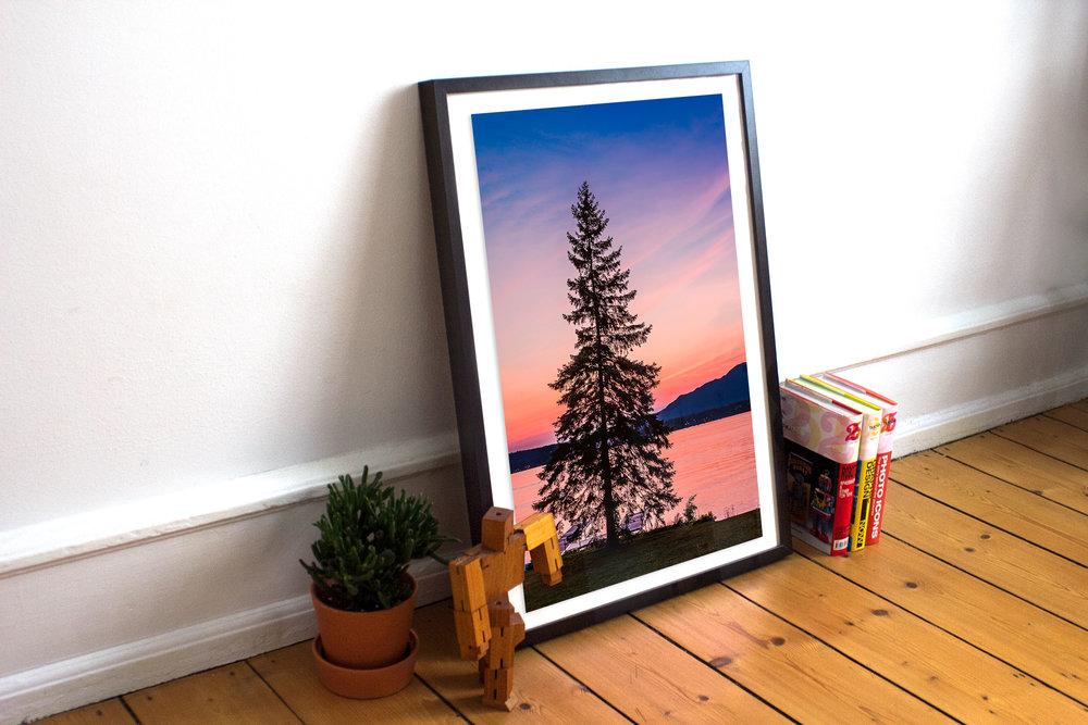 TreePink.jpg