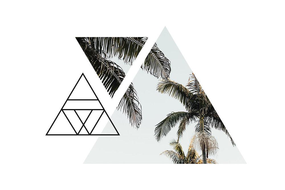 Waylon-triangle_06b.jpg