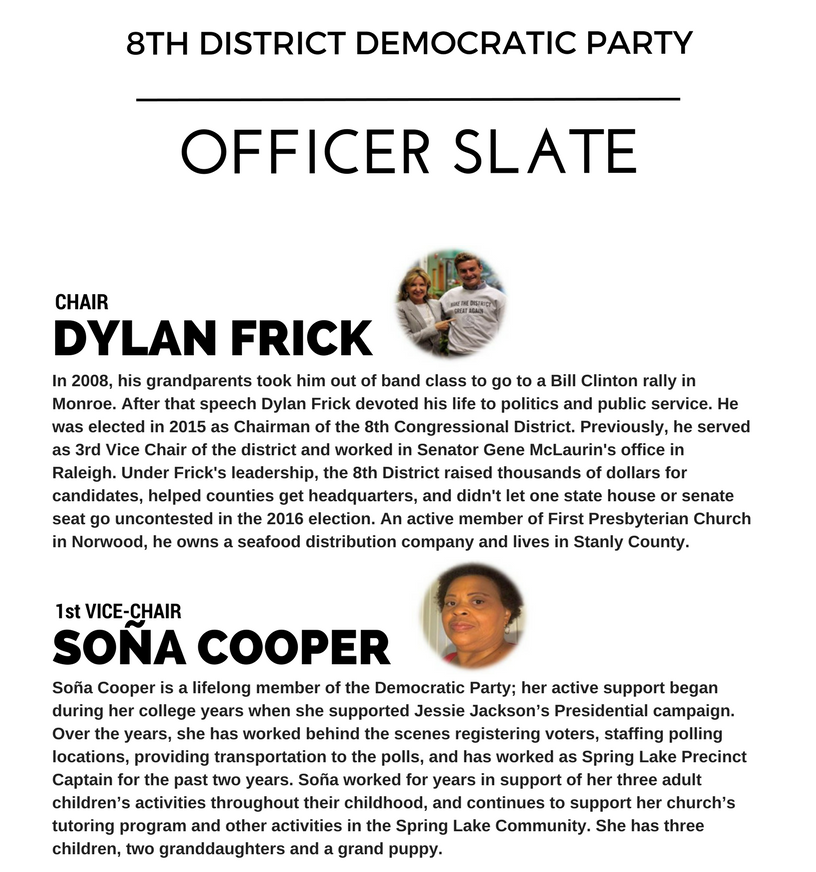 8th Congressional DistrictDemocratic PartyPNG.png