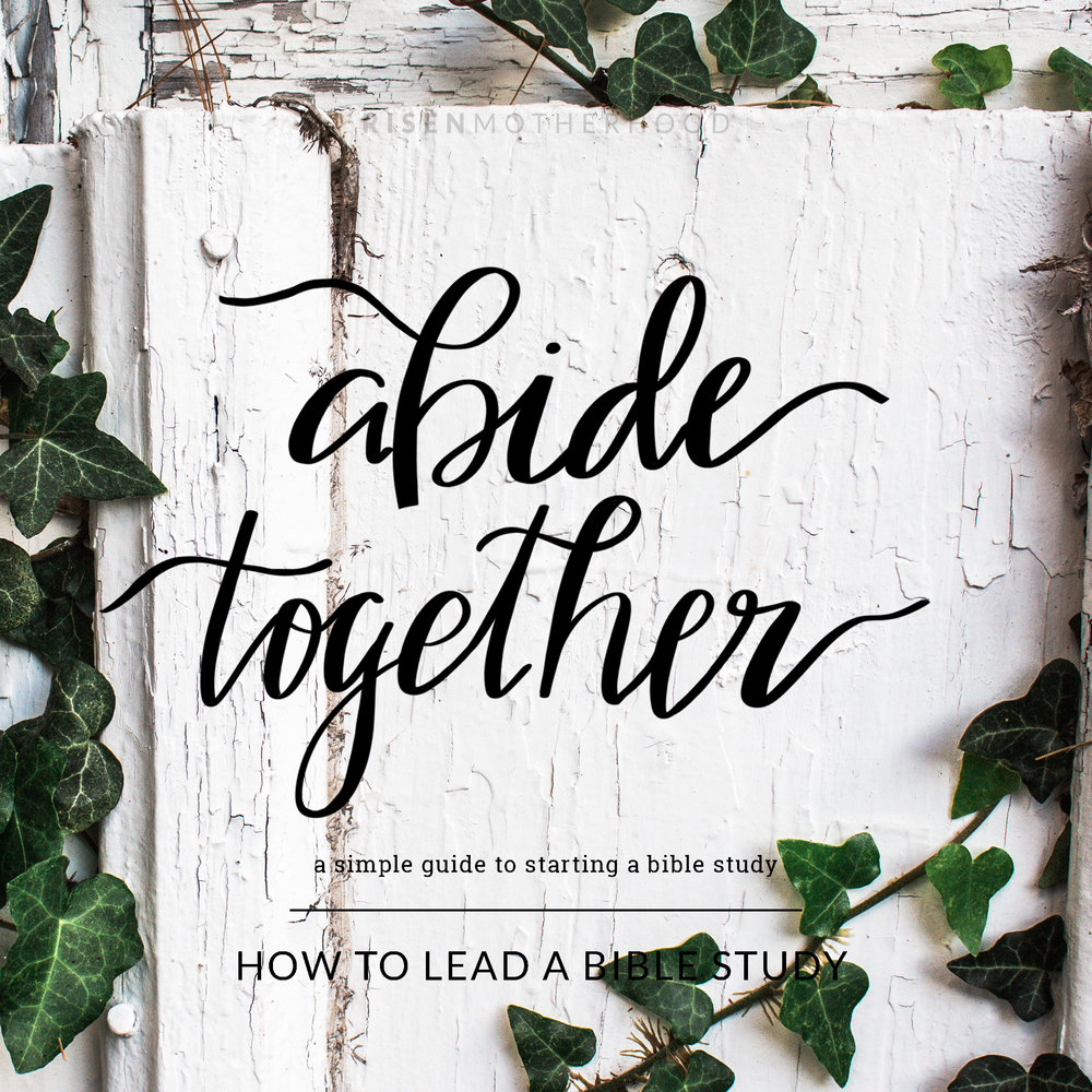 AbideTogether6.jpg