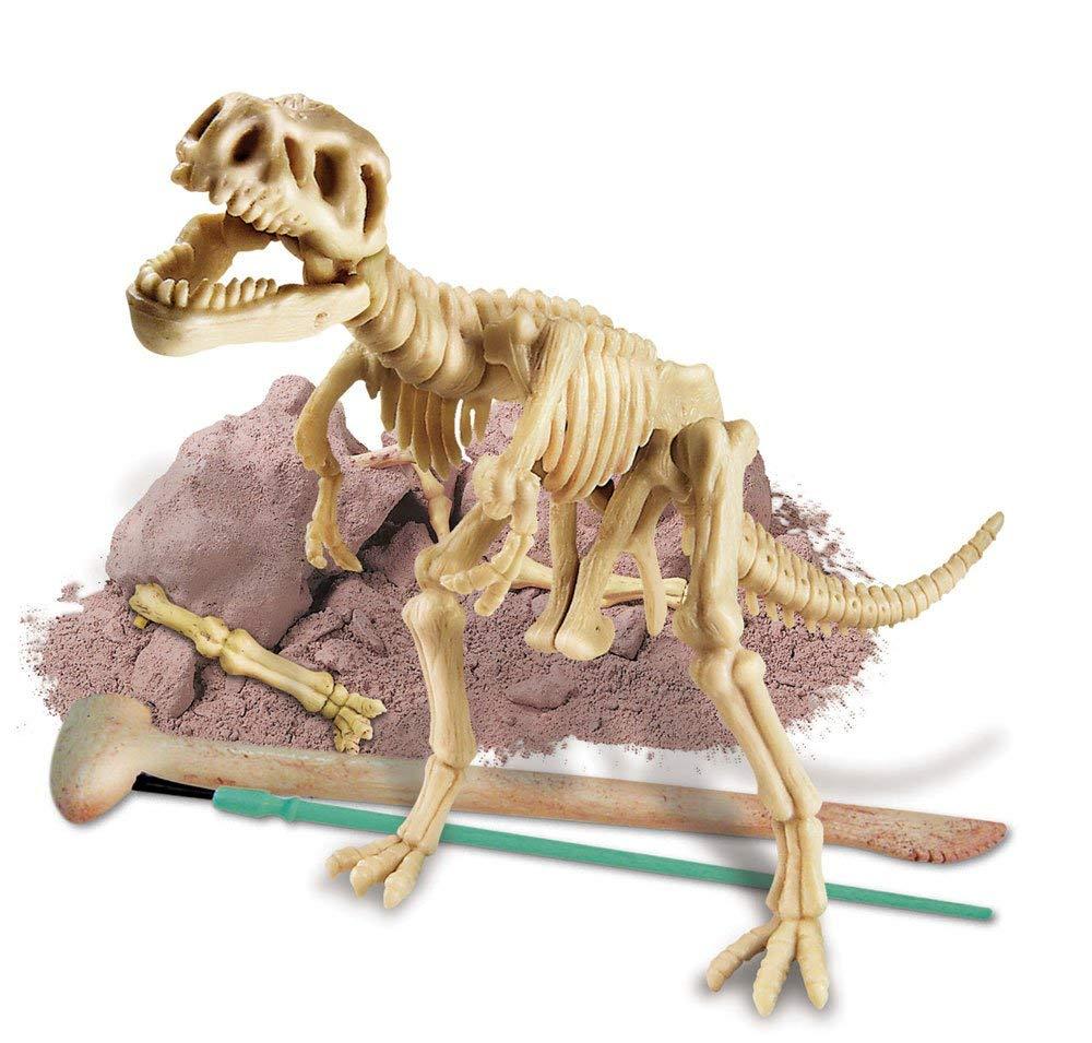 Laura's Happy - Dig-A-Dino