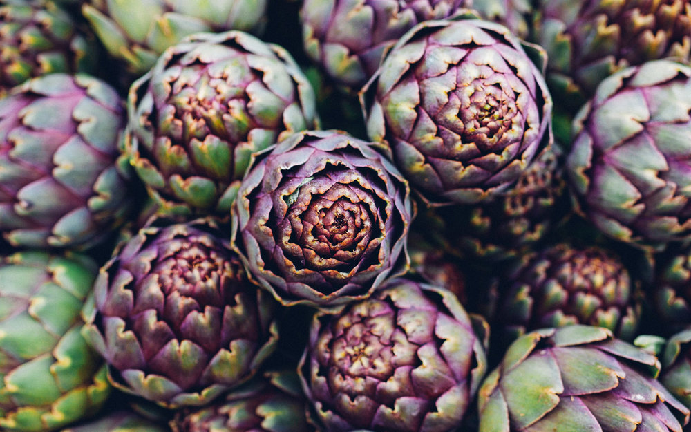artichoke Foodshed Alliance © 2017.jpg