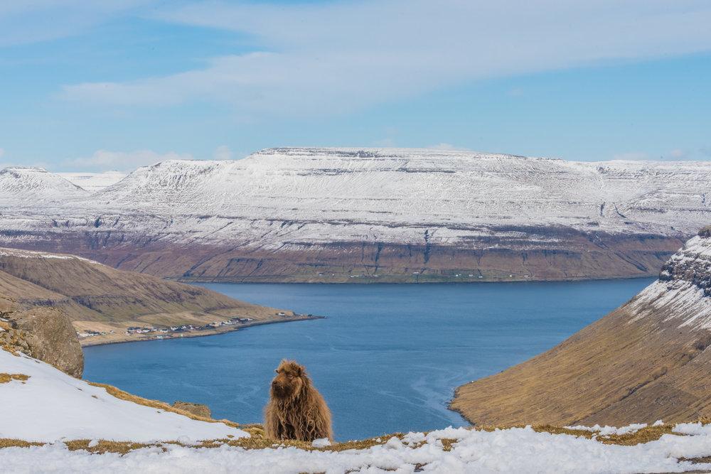 - Day 8: Leaving the Faroe islands