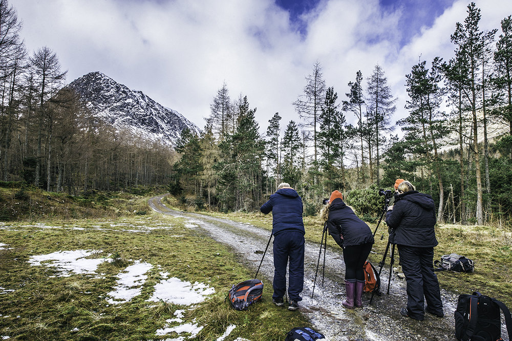 One to One Outdoor Photography Courses    Whether you're a beginner or advanced amateur looking to expand your knowledge in outdoor photography, this workshop is ideal.  No distractions, stunning locations lots of  patience .       Read More >