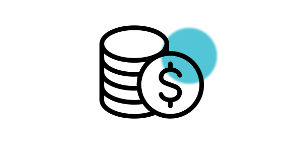 Multi-currency, consolidation accounting software