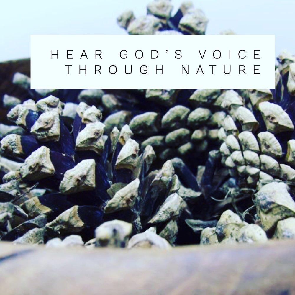 Hear God Through Nature