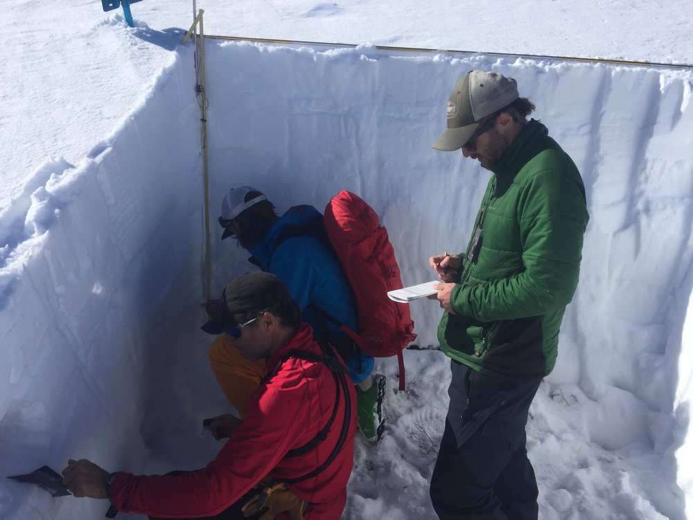 AIARE Level 2 students refining snowpack observations.