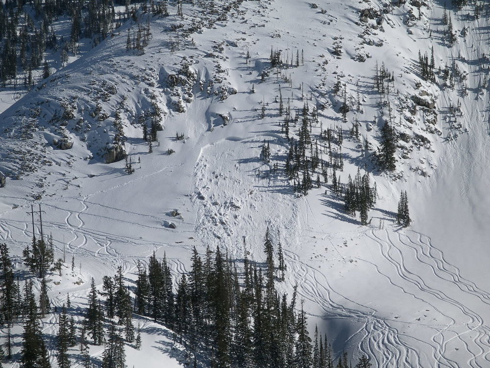 Many ski tracks go through this avalanche path before somebody who was post-holing triggered this avalanche.  Notice their tracks working their way up towards the crown.  Photo: Jonathon Spitzer