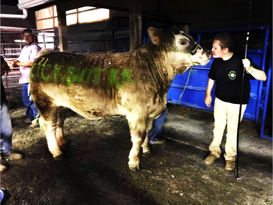 Kaisy kissing her glittered up steer Smokey, before the BSS Sale at the Frederick Fair.