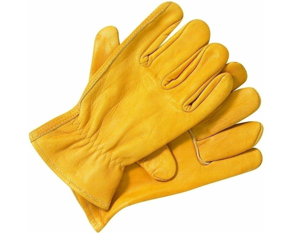 Leather work gloves.jpg