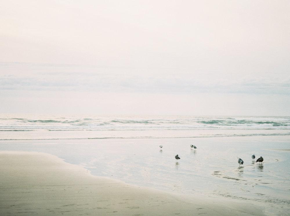 JENNI_KUPELIAN_ocean_blog-35.JPG
