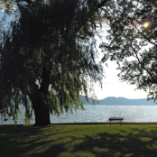 Croton_Point_Park_riverside_bench.tiff.jpg