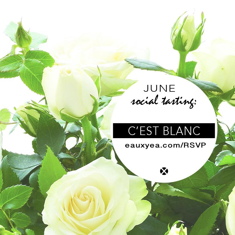 Cest Blanc Eauxyea.jpg