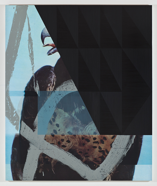 Screen (martial eagle), 2011  Acrylic and UV cured print on canvas over panel  72 x 60 inches  182.88 x 152.4 cm