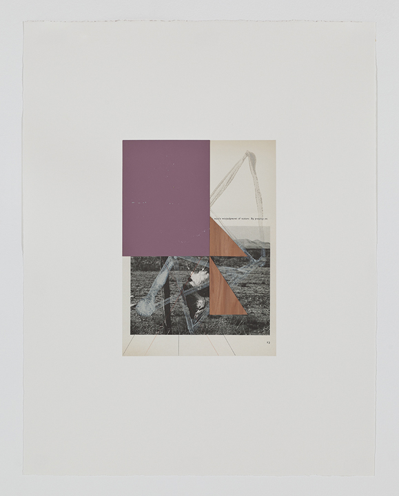 Screen (swainson hawk), 2009  Acrylic, collage and pencil on archival pigment  print on watercolor paper  23 x 18.5 inches  58.42 x 46.99 cm