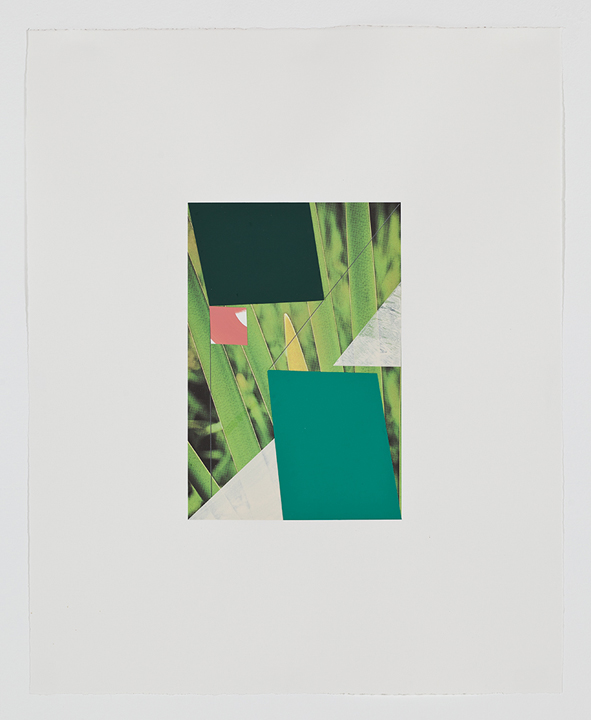 Screen (grass), 2009  Gouache, collage and pencil on archival pigment  print on watercolor paper  23 x 18.5 inches  58.42 x 46.99 cm