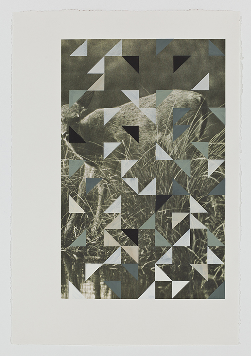 Screen (fawn), 2009  Gouache on archival pigment print on watercolor  paper  40 x 26 inches  101.6 x 66.04 cm