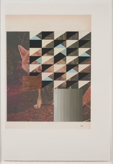 Screen (kit fox), 2009  Gouache, collage and pencil on archival pigment  print on watercolor paper  38.5 x 26 inches  97.79 x 66.04 cm