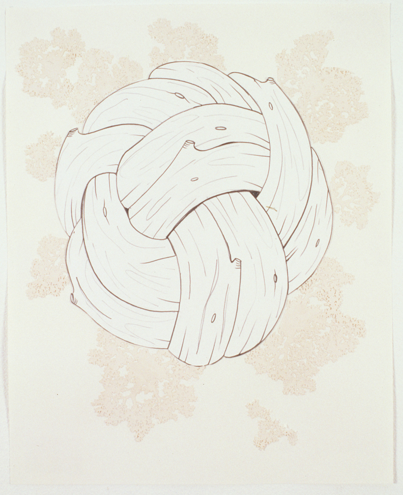 Knot, 2003  Pencil, gouache and collage on paper  14 x 11 inches  35.56 x 27.94 cm