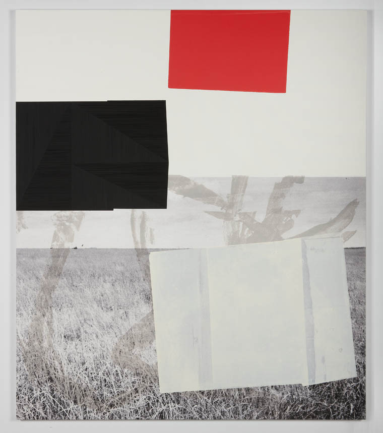 Screen (prairie), 2011  Acrylic, screen ink and UV cured print on canvas  over panel  77 x 66 inches  195.58 x 167.64 cm