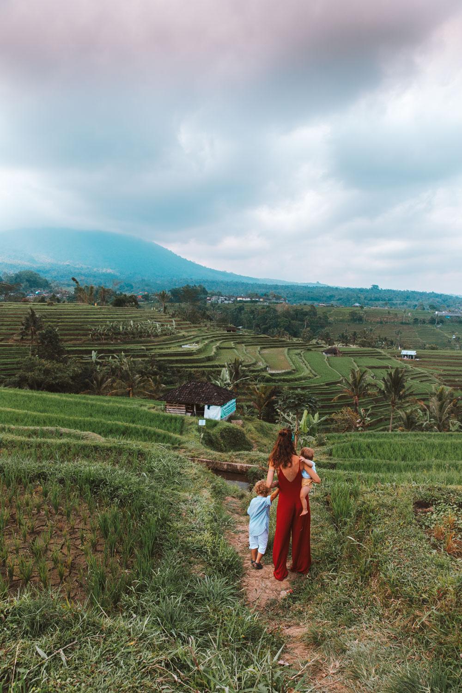 Bali1-1403.jpg