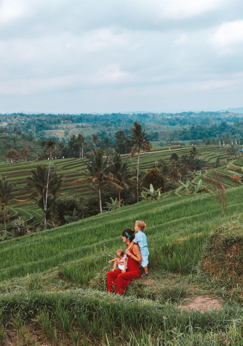 Bali1-1409.jpg