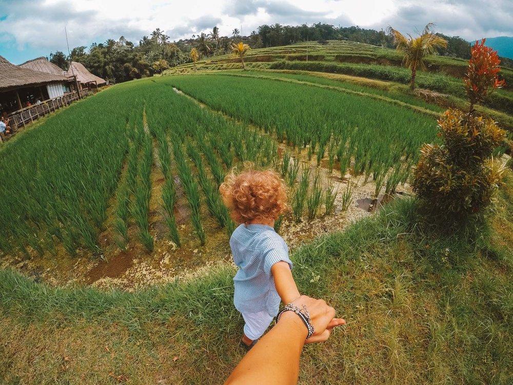 Bali1-0263.jpg