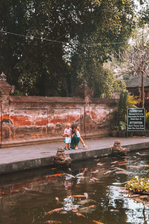 Bali2-2292.jpg