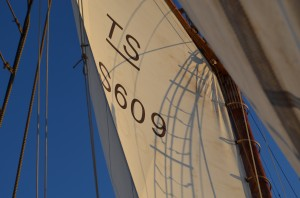 Välkommen ombord!  Segel mot blå himmael Skolfartyget Westkust erbjuder seglarkurs, seglarskolor och dagsturer för alla åldrar och önskemål längs Bohusläns kust. Oavsett om du vill ha en äventyrssegling med mycket action, en lugn räkkryssning eller att dina barn ska ha det bästa sommarlovet någonsin har vi något för dig. Inga förkunskaper krävs – bara kom ombord och njut!