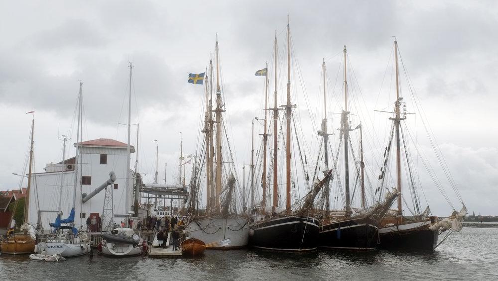 Efter väl genomförd segling ligger båtarna förtöjda vid kaj i Björkö hamn.