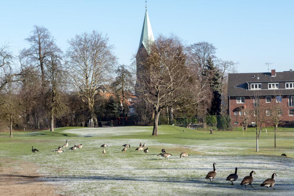 Wintergolf  Januar 2019 GC Schloss Westerholt (2 von 22).JPG