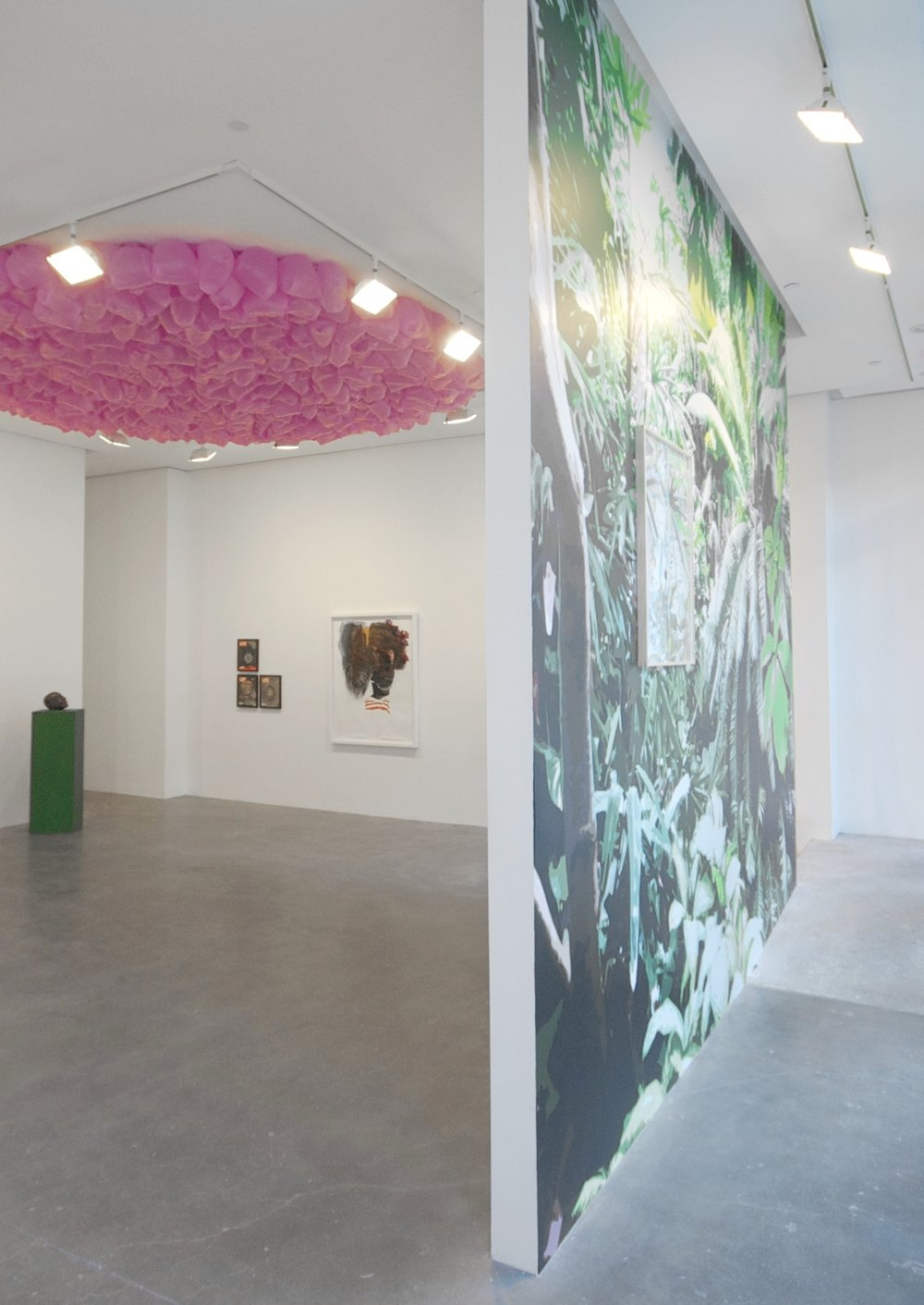 AMERICAN BEAUTY_Installation View (4).jpg