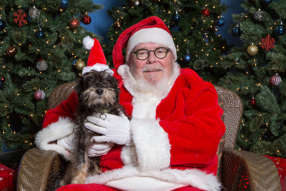 SPCA Santa Photos 2017 -