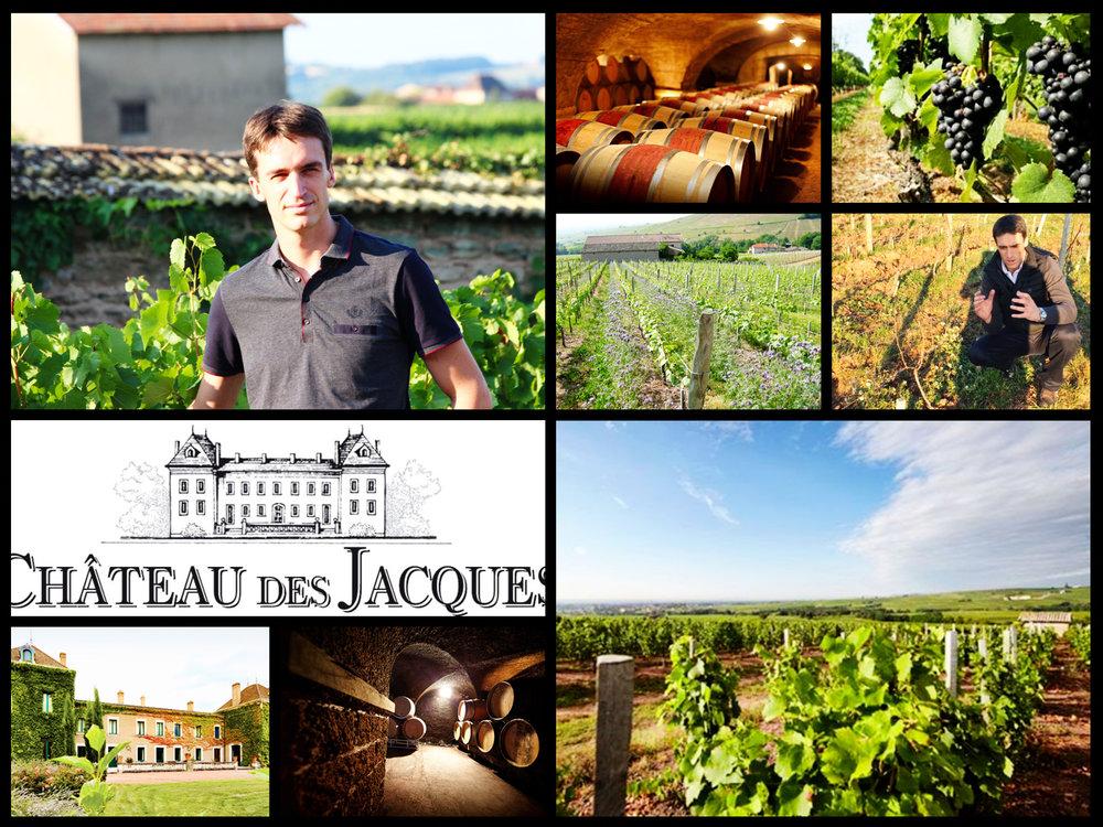 Dégustation Château des Jacques (Moulin à Vent) - le 7 juin 2017 avec Cyril Chirouze