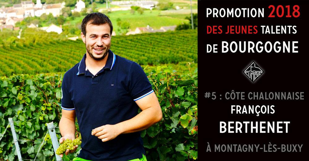 François représente la dixième génération de vigneron sur le domaine familial établi à Montagny depuis 4 siècles. Il est revenu sur le domaine en 2009 à l'âge de 22 ans pour travailler avec son père, mais avec l'idée de repartir à l'étranger (en Nouvelle Zélande). Finalement, ayant pris goût à la qualité de vie en Côte Chalonnaise, il n'a plus quitté le domaine et en a repris les rênes à la retraite de son père en 2016. Il travaille aujourd'hui sur 20 ha de vignes, principalement sur Montagny, en lutte raisonnée depuis 2000. 80 % des vignes sont plantés en sélection massale issue des plus vieilles vignes du village. Le domaine fabrique ses propres engrais vert avec du fumier de cheval et de bovins. A la vigne et en cave, François travaille en fonction des cycles lunaires. Dans une recherche de précision toujours plus grande, Il a récemment changé ses pressoirs et allongé les durées d'élevage de quelques cuvées. Au fil du temps, François isole de plus en plus de parcelles afin de mettre en valeur la diversité de ses terroirs.